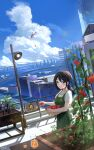 1girl aircraft apron bangs black_hair blue_eyes blue_sky city closed_mouth clouds commentary_request cowboy_shot cumulonimbus_cloud day food green_apron helicopter highres holding juice lamp long_hair looking_at_viewer m.a.y. original outdoors plant short_sleeves signature sky smile solo standing summer sweat tomato water
