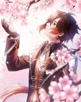1boy arm_up bangs black_gloves black_hair blurry blurry_foreground brown_hair cherry_blossoms chinese_commentary commentary_request earrings facing_to_the_side genshin_impact gloves gradient_hair hair_between_eyes highres jacket jewelry light long_hair long_sleeves looking_to_the_side male_focus multicolored_hair ponytail sarablanche shirt single_earring solo tassel tassel_earrings upper_body vision_(genshin_impact) yellow_eyes zhongli_(genshin_impact)