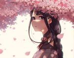 1girl artist_name bangs cherry_blossoms commentary english_commentary eyebrows_visible_through_hair falling_petals flower from_side genshin_impact highres japanese_clothes long_hair looking_at_viewer minchik mole mole_under_eye open_mouth petals pink_flower purple_hair raiden_(genshin_impact) ribbon simple_background solo violet_eyes white_background