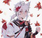 1boy absurdres autumn_leaves blush genshin_impact grey_hair highres kaedehara_kazuha long_hair looking_at_viewer mono-caeli multicolored_hair ponytail red_eyes streaked_hair white_background