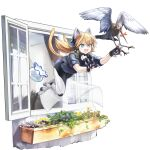 1girl :d animal_ears autodefenestration bird blonde_hair blue_eyes blue_shirt cat_ears cat_tail collar curtains fang fish fishbowl full_body girls'_frontline girls'_frontline_neural_cloud highres idw_(girls'_frontline) mechanical_hands mechanical_legs mouth_hold official_art open_mouth open_window plant pouncing shirt sleeves_rolled_up smile solo symbol-shaped_pupils tail transparent_background twintails window windowsill