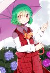 1girl bangs blue_flower blush bush closed_mouth clouds cloudy_sky collar eyebrows_visible_through_hair eyes_visible_through_hair flower green_hair grey_sky hair_between_eyes hands_up highres holding holding_umbrella kazami_yuuka long_sleeves looking_at_viewer no_hat no_headwear pink_flower plaid plaid_skirt plaid_vest rain red_eyes red_skirt red_vest shadow shirt short_hair skirt sky smile solo standing touhou umbrella vest white_shirt yellow_neckwear zeroko-san_(nuclear_f)