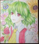 1girl ascot bad_id bad_pixiv_id cherry_blossoms collared_shirt dated eyebrows_visible_through_hair flower green_hair hair_between_eyes kazami_yuuka long_sleeves looking_at_viewer passion_flower photo_(medium) plaid plaid_vest red_eyes red_vest rose sen_hisame shirt short_hair signature smile solo sunflower touhou traditional_media upper_body vest white_background white_shirt yellow_neckwear