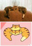 :3 animal_focus animated animated_gif border cat flipnote_studio_(medium) keke_(kokorokeke) looping_animation lowres multiple_heads no_humans original reference_photo_inset signature smile walking white_border