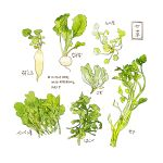 commentary cyannism english_commentary english_text food food_focus food_request no_humans original radish simple_background translation_request vegetable white_background
