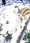 1girl animal_ears balancing bangs black_eyes blonde_hair boots bow bowtie breath brown_hair chipmunk_(kemono_friends) chipmunk_ears chipmunk_girl chipmunk_tail commentary dated elbow_gloves eyebrows_visible_through_hair fallen_tree footprints gloves hair_between_eyes highres kemono_friends multicolored_hair outdoors outstretched_arms red_neckwear shirt signature snow solo spread_arms striped_tail tail walking white_hair white_shirt winter yoshida_hideyuki