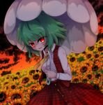 1girl blood blood_on_clothes blood_on_face blood_on_hands blurry blurry_background breasts buttons collared_shirt eyebrows_visible_through_hair field flower flower_field glowing glowing_eyes green_hair highres holding holding_umbrella kazami_yuuka looking_at_viewer medium_breasts medium_hair motion_blur open_mouth outdoors red_skirt red_sky red_vest shen_li shirt skirt skirt_set sky solo sunflower sunflower_petals touhou umbrella vest white_shirt yellow_neckwear