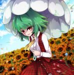 1girl blue_sky blurry blurry_background breasts buttons collared_shirt day eyebrows_visible_through_hair field flower flower_field green_hair highres holding holding_umbrella kazami_yuuka looking_at_viewer medium_breasts medium_hair motion_blur open_mouth outdoors red_skirt red_vest shen_li shirt skirt skirt_set sky solo sunflower sunflower_petals touhou umbrella vest white_shirt yellow_neckwear