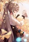 1girl absurdres ahoge autumn_leaves belt belt_pouch bench bird blurry blurry_foreground branch breasts brooch brown_belt brown_corset brown_eyes brown_gloves brown_hair cleavage_cutout closed_mouth clothing_cutout falling_leaves feather_hair_ornament feathers friend_(nanashi_mumei) frilled_skirt frills from_behind gloves hair_ornament hair_tie highres hololive hololive_english jewelry lantern leaf long_hair medium_breasts multicolored_hair nanashi_mumei owl partially_fingerless_gloves ponytail pouch puffy_sleeves red_skirt runes shirt sitting skirt smile streaked_hair tied_hair very_long_hair white_shirt wolfgang_(paul94104875)