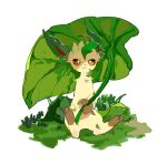 :3 animal_focus apios1 closed_mouth commentary day full_body gen_4_pokemon grass green_theme hands_together happy holding holding_leaf leaf leaf_umbrella leafeon looking_at_viewer no_humans orange_eyes outdoors pokemon pokemon_(creature) simple_background sitting smile solo spread_legs white_background