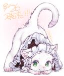 :3 animal animal_ears body_fur cat cat_ears cat_tail claws closed_mouth commentary_request dated green_eyes ikuta_takanon maid maid_headdress no_humans original smile solo tail top-down_bottom-up twitter_username whiskers