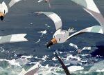 bird blurry blurry_foreground day depth_of_field flying gen_3_pokemon highres kamonabe_(kamonabeekon) no_humans ocean outdoors pokemon pokemon_(creature) seascape water waves wingull