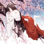 1girl bare_shoulders blue_eyes blue_sky branch brown_hair chajott64 character_request cherry_blossoms closed_mouth commentary gradient gradient_background hakama hakama_skirt japanese_clothes kimono lips long_hair looking_at_viewer lying miko on_stomach onmyoji outdoors pointy_ears red_skirt skirt sky socks solo white_background white_kimono white_legwear