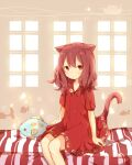 1girl animal_ears bangs beige_background blush cat_ears cat_girl cat_tail coco_(hinatacoco) dress fish_pillow hair_between_eyes indoors looking_at_viewer original red_dress red_eyes redhead short_sleeves sitting solo striped tail window