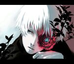 1boy bangs black_shirt closed_mouth commentary_request flower gradient gradient_background hand_on_own_chin hand_up kaneki_ken koujima_shikasa letterboxed looking_to_the_side male_focus one_eye_covered pale_skin plant portrait red_background red_flower shirt short_hair solo tokyo_ghoul white_background white_hair