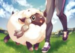 1boy :d black_eyes blurry clouds day grass highres hop_(pokemon) komame_(st_beans) male_focus open_mouth outdoors pants pokemon pokemon_(creature) pokemon_(game) pokemon_swsh shoes sky smile standing tongue wooloo