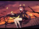 1girl bangs black_nails branch brown_hair brown_headwear brown_jacket bug butterfly chinese_clothes flower genshin_impact hat highres hu_tao_(genshin_impact) jacket kneehighs long_hair open_mouth orange_eyes outdoors plum_blossoms rooftop sitting_on_roof sky solo ssm_(ssm82048039) star-shaped_pupils star_(symbol) sunset symbol-shaped_pupils white_legwear wide_sleeves