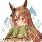 1girl animal_ears bangs blush braid brown_hair closed_mouth clouds commentary_request ear_ornament eyebrows_visible_through_hair frilled_sleeves frills grey_hair horse_ears kushibi long_hair long_sleeves looking_at_viewer multicolored_hair orange_eyes satono_diamond_(umamusume) sleeves_past_fingers sleeves_past_wrists smile solo two-tone_hair umamusume upper_body white_background
