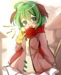 1girl ahoge animal_ears arm_behind_back bangs blush broom commentary_request dress gloves green_eyes green_hair hand_up holding holding_broom kasodani_kyouko long_sleeves looking_at_viewer medium_hair open_mouth paragasu_(parags112) pink_dress red_scarf scarf solo stone_lantern touhou upper_body upper_teeth winter_clothes yellow_gloves