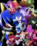 amy_rose big_the_cat bodysuit charmy_bee cheese_(sonic) cream_the_rabbit dr._eggman e-123_omega espio_the_chameleon everyone furry furry_female furry_male hammer holding holding_hammer knuckles_the_echidna metal_sonic robot rouge_the_bat shadow_the_hedgehog sonic_(series) sonic_heroes sonic_the_hedgehog tails_(sonic) tondamanuke vector_the_crocodile