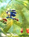 1boy animal_nose flower forest furry furry_male giant_tree green_eyes grin holding jungle male_focus nature plant red_flower red_footwear rock shoes smile solo sonic_(series) sonic_adventure_2 sonic_the_hedgehog sunlight tondamanuke tree vines