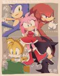1girl 4boys amy_rose blue_eyes blush boots crossed_arms dress furry furry_female furry_male gloves green_eyes knuckles_the_echidna multiple_boys musical_note red_dress red_eyes red_footwear running shadow_the_hedgehog smile sonic_(series) sonic_the_hedgehog tails_(sonic) thinking tondamanuke translation_request violet_eyes white_gloves