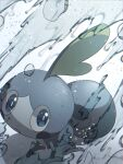 alu_drp blue_eyes bright_pupils closed_mouth commentary_request frown highres looking_at_viewer looking_up no_humans pokemon pokemon_(creature) sobble solo water water_drop white_pupils