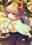 1girl animal_ears animal_on_shoulder apple bangs basket black_skirt blue_capelet blush capelet commentary_request dappled_sunlight dowsing_rod eyebrows_visible_through_hair food fruit grapes grass grey_hair highres jewelry leaf long_sleeves mouse mouse_ears mouse_tail nazrin orange_(fruit) pendant red_eyes ribbon shirt short_hair skirt smile solo sunlight tail tomobe_kinuko touhou walking white_shirt yellow_neckwear yellow_ribbon