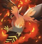 beak bird black_eyes blurry commentary_request embers from_behind highres mian_(3zandora) no_humans pokemon pokemon_(creature) solo talonflame talons