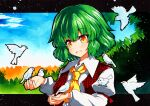 1girl :d ascot bangs bird bird_on_hand blue_sky eyebrows_visible_through_hair grass green_hair juliet_sleeves kazami_yuuka long_sleeves looking_at_animal looking_at_viewer multicolored multicolored_eyes open_mouth orange_eyes outdoors plaid plaid_vest puffy_sleeves qqqrinkappp red_vest short_hair sky smile touhou traditional_media upper_body vest white_bird yellow_neckwear