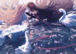 2girls aako akemi_homura akuma_homura argyle argyle_legwear bare_shoulders bird black_hair closed_eyes flower_on_liquid gloves goddess_madoka hair_spread_out hairband hand_on_another's_face high_heels kaname_madoka light long_hair long_ribbon looking_at_another mahou_shoujo_madoka_magica mahou_shoujo_madoka_magica_movie multiple_girls pink_hair red_hairband red_ribbon ribbon sitting swan swing thigh-highs very_long_hair wariza water white_gloves white_ribbon
