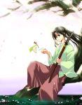 bird black_hair blue_eyes female japanese_clothes kamiya_kaoru long_hair ponytail rurouni_kenshin sitting solo sword tree uya water