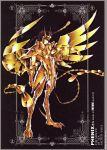 future_studio male phoenix_ikki saint_seiya tagme