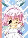 chicchana_yukitsukai_sugar koge_donbo sugar tagme