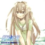 disc_cover scanning_artifacts screening seto_no_hanayome seto_san