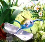 flower hat leaf nature no_humans oota_alisa pokemon pokemon_(game) pokemon_rse rainbow solo surskit water_drop