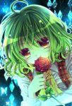 breasts bust butterfly dress flower green_hair holding holding_flower kazami_yuuka momomiya_mion plaid plaid_vest red_eyes red_rose rose smile solo tartan touhou vest yellow_eyes
