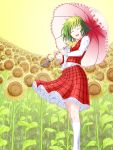 ascot closed_eyes dress fisheye flower flower_field green_hair highres kazami_yuuka kneehighs petticoat pixiv_manga_sample plaid plaid_skirt plaid_vest red_eyes short_hair skirt skirt_set smile solo sunflower touhou umbrella white_legwear