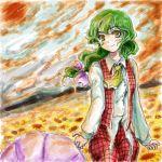 bow flower_field green_eyes green_hair hair_bow kazami_yuuka kazami_yuuka_(pc-98) long_hair lowres nanashii_(soregasisan) oekaki parasol plaid_pants plaid_vest touhou touhou_(pc-98) umbrella