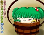 blonde_hair bucket green_hair hair_bobbles hair_ornament kisume koyukkuri kurodani_yamame no_humans shishou_no_deshi sleeping smile touhou translation_request yamame