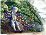 blue_eyes blue_hair bow cirno flower frog gradient_hair green_hair hair_bow hydrangea multicolored_hair puddle rainbow rock sitting sitting_on_object touhou v_arms wings