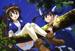 absurdres ayane_(nagasarete_airantou) black_eyes blue_eyes blue_hair boots brown_hair frown hair_ribbon highres hosoda_naoto in_tree japanese_clothes leaf long_hair megami miko multiple_girls nagasarete_airantou ninja outdoors panties pantyshot ponytail ribbon sandals scan sitting sitting_in_tree skirt sky socks suzu suzu_(nagasarete_airantou) tears thighhighs tree twintails underwear upskirt very_long_hair