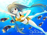 barefoot bikini brown_hair fish freediving gagraphic naruse_hirofumi original red_eyes striped striped_bikini striped_swimsuit swimsuit twintails underwater wallpaper