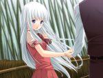 blue_eyes blush game_cg kitto_todoku_sumiwataru_asairo_yori_mo kumigami_hiyo seifuku white_hair yasuyuki