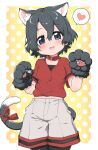 1girl :d animal_ear_fluff animal_ears animal_hands bangs black_hair black_legwear blue_eyes blush border breasts cat_ears cat_tail collar commentary_request eyebrows_visible_through_hair gloves gradient gradient_background grey_shorts hair_between_eyes hands_up head_tilt heart highres kaban_(kemono_friends) kemono_friends kemonomimi_mode looking_at_viewer no_hat no_headwear open_mouth orange_background outside_border pantyhose paw_gloves polka_dot polka_dot_background ransusan red_collar red_ribbon red_shirt ribbon shirt short_hair short_sleeves shorts simple_background small_breasts smile solo spoken_heart tail tail_ornament tail_ribbon white_border