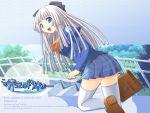 blue kono_aozora_ni_yakusoku_wo seifuku tagme