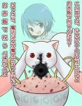 blue_eyes blue_hair bowl cereal grief_seed kyubey kyuubee mahou_shoujo_madoka_magica miki_sayaka mimisu_(mmsongr) mmsongr sekihan_(tradition) short_hair spoilers translated translation_request