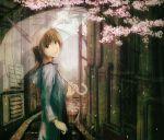 brown_hair cherry_blossoms looking_back original petals rain see-through short_hair solo stairs transparent_umbrella umbrella yoshidaworks