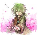 1boy final_fantasy final_fantasy_xi fujiwara_akina green_hair pointy_ears short_hair solo tarutaru violet_eyes