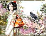 black_hair cherry_blossoms crow hat highres japanese_clothes kuro_kichi m.u.g.e.n shameimaru_aya short_hair tokin_hat touhou